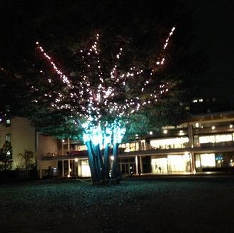 【終了】子ども未来センター前広場 ライトアップのお知らせ(2016年)